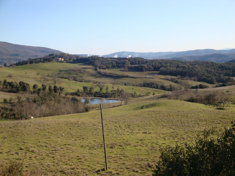 AZIENDA AGRICOLA VENDITA Monteverdi Marittimo