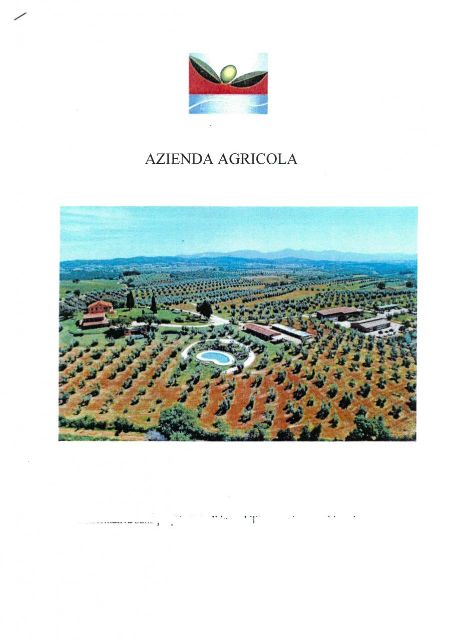 AZIENDA AGRICOLA VENDITA Massa Marittima  Centro