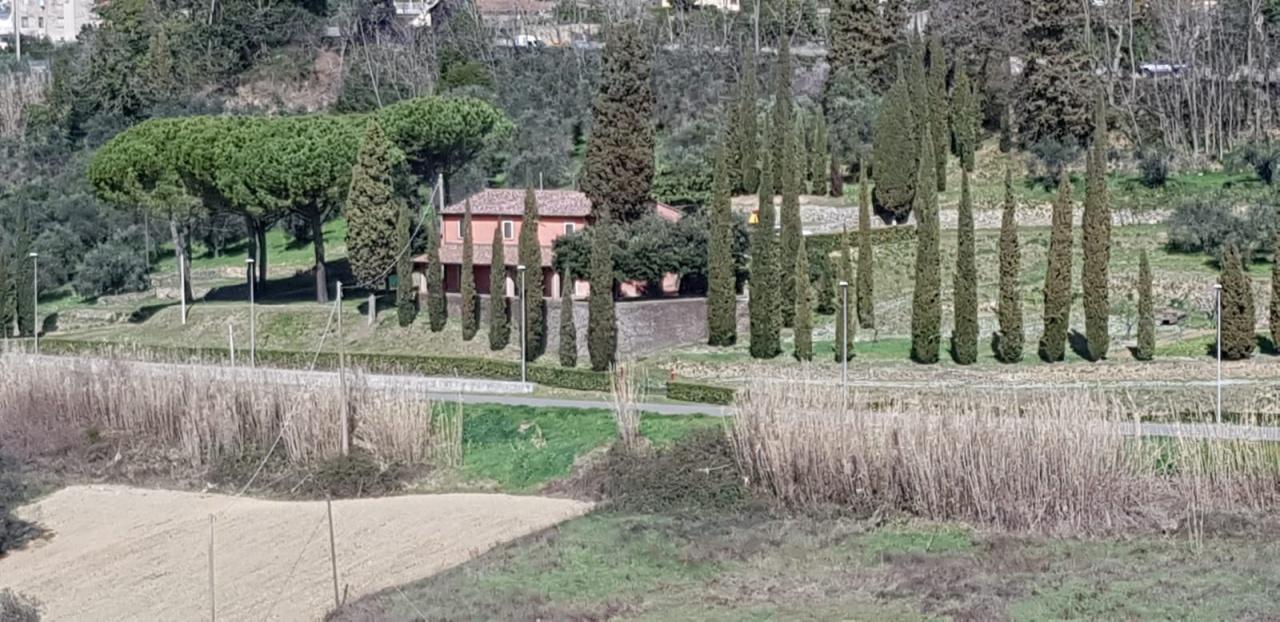 RUSTICO VENDITA Montescudaio